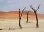 Namibia 2012 Landschaften